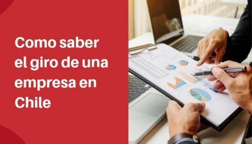 Como saber el giro de una empresa en Chile